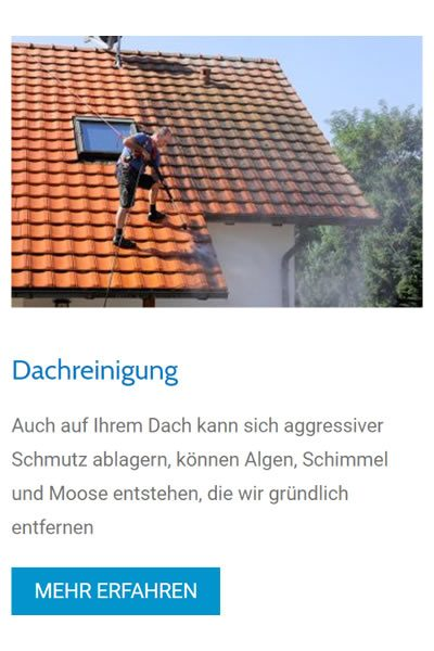 Dachreinigungen für  Going am Wilden Kaiser